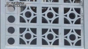 名護市庁舎の花ブロック